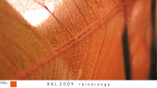 2004_s.jpg