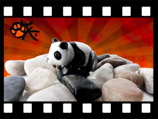 film1_panda_s.jpg